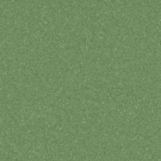 DARK GREEN 21020977
